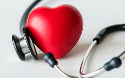 El Corazón: Mayor número de pulsaciones puede ser riesgoso